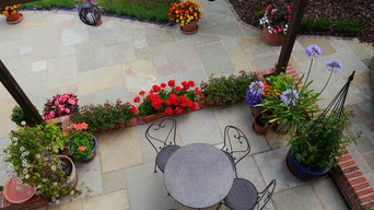 Amber Limestone Patio & Paving
