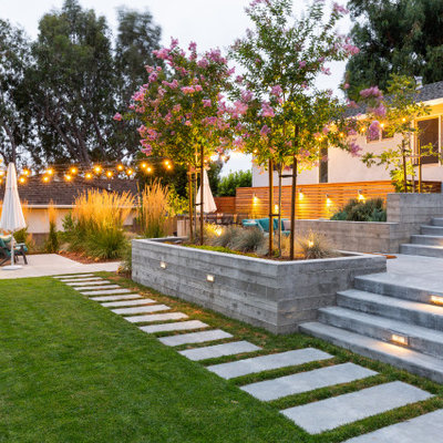Design ideas for a mid-century modern landscaping in San Francisco.