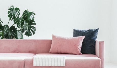 Trending: Pink Velvet