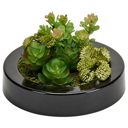 Contemporary Artificial Plants And Trees by WORTH IMPORTS