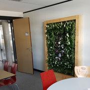 Foto de Conception et réalisation de murs végétalisés
