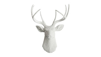 Faux Resin Deer Head Wall Mount, White With White Antlers