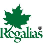 Regalias Modular Designers's photo