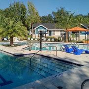 My Favorite Pool Builder, Inc.'s photo