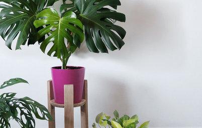 Hazlo tú mismo: Un sencillo soporte de madera para tus plantas