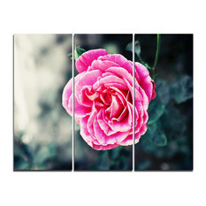 """""""Red Rose in Vintage Style"""" Digital Canvas Print, 3 Panels, 36""""x28"""""""