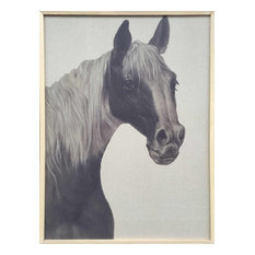 Wall Decor Painting Indian Horse II