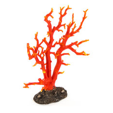 Red-Orange Coral - Orange Red with Distressed Brown Base, Small