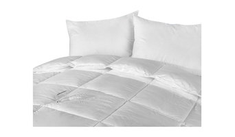 Stayclean Down Alternative Cotton Comforter with Stain Protection, White, Full/Q