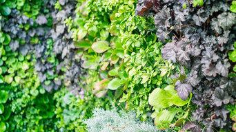 Mur végétal Villa privée