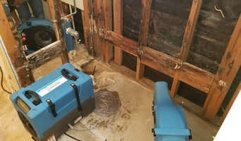 Mold Remediation in Houston, TX