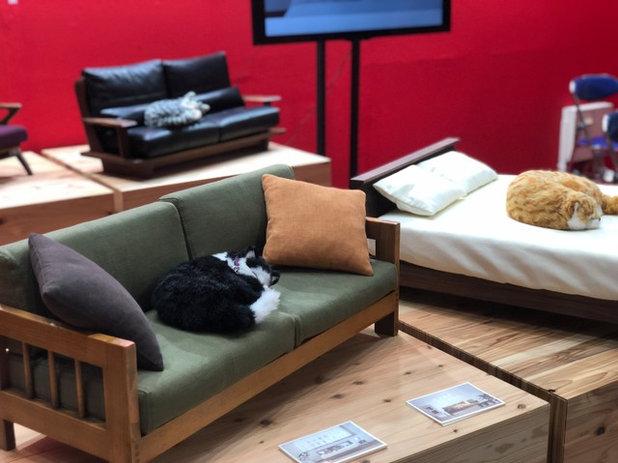 IFFT / Interior Lifestyle Living2018