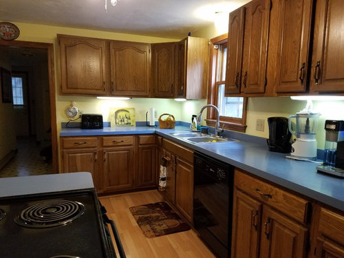 Need countertop suggestions and more for 1980's oak cabinet kitchen