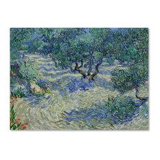 Van Gogh 'Olive Orchard' Canvas Art, 47 x 35