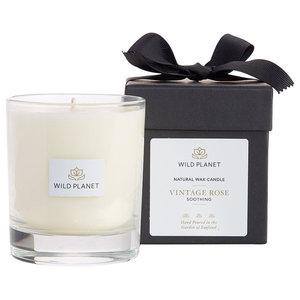 Wild Planet Vintage Rose Luxury Aromatherapy Candle, Single Wick