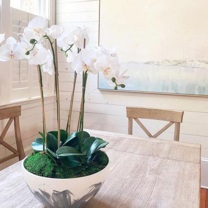Laura Boyd Design | Charleston and New England Interior Designer