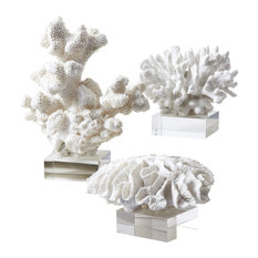 Reef White Coral Sculptures, Set of 3