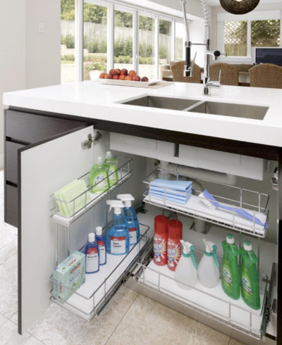Expert Eye: How to Use Your Under-Sink Area for Kitchen Storage