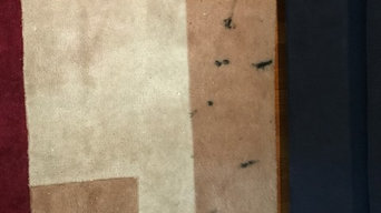 Area rug cleaning & stain removal