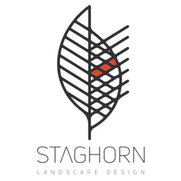 Staghorn NYC's photo