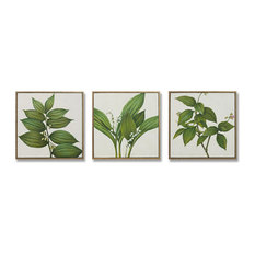 """MOTINI Herbs Oil Paintings Canvas Wall Art 17.25"""" x 17.25""""- Set of 3"""