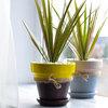 DIY: Как украсить цветочный горшок своими руками
