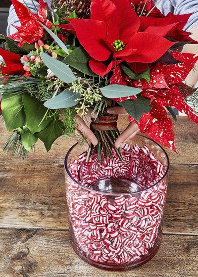 Stelle di Natale - Christmas ideas
