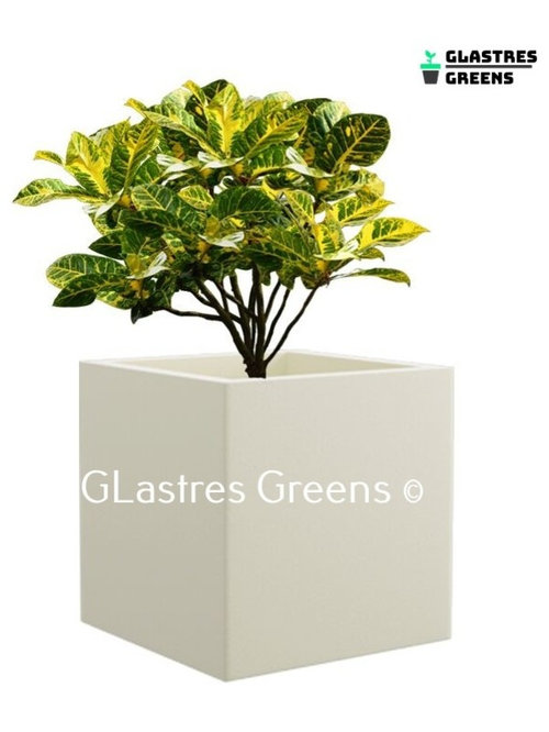 Planter - Outdoor Pots And Planters
