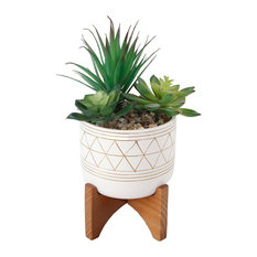 Faux Succulents In Gold Handpiant Ceramic Footed Stand, 5""
