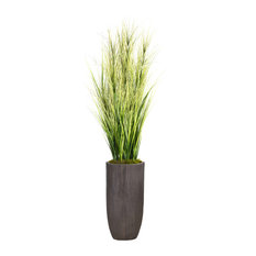 """Laura Ashley 74.25"""" Tall Onion Grass Artificial With Twigs, Resin Planter"""