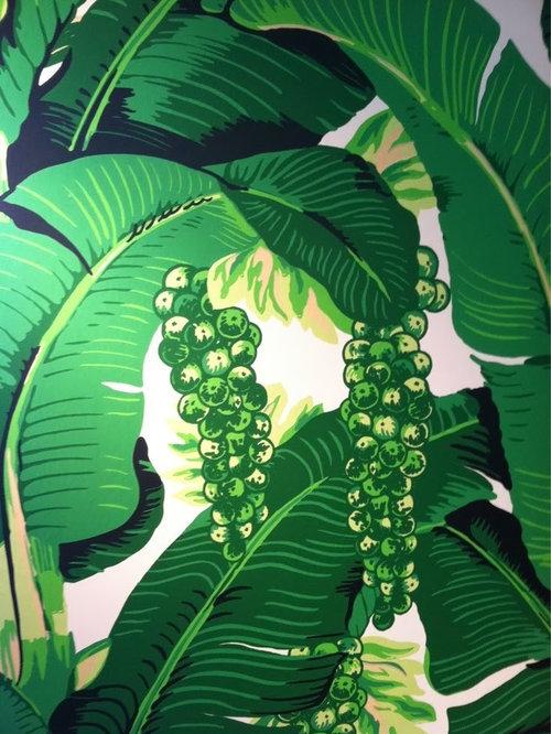 dorothy draper briazilliance wallpaper fabric
