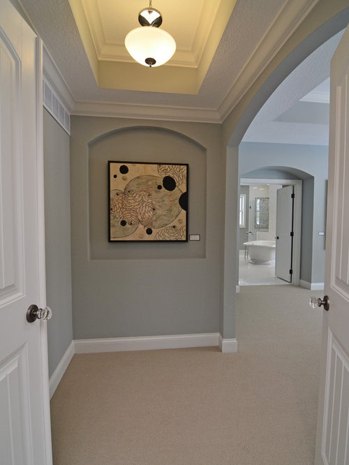 Magnetic Gray | Houzz