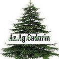 Foto di profilo di Az Ag Cadorin
