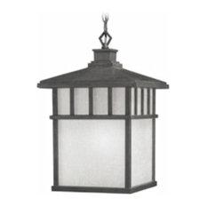 Dolan Designs Barton, One Light Outdoor Hanging Lantern
