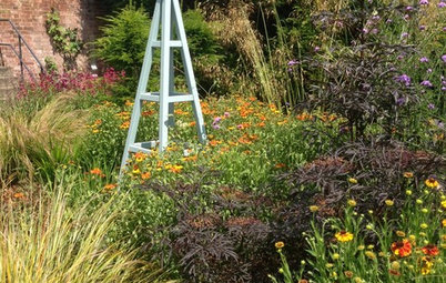 Modern Planting Ideas From a Historic English Garden
