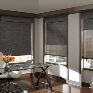 6d103de7034 Example of a trendy home design design in Other. Save Photo. Hunter Douglas  Designer Screen Shades and Window Treatments