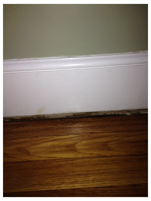 How Can I Fix The Wood Trim Molding Around The Floor