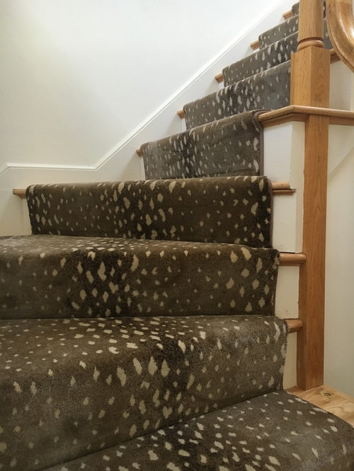 Animal Print Stair Runners   Hall And Stair Runners