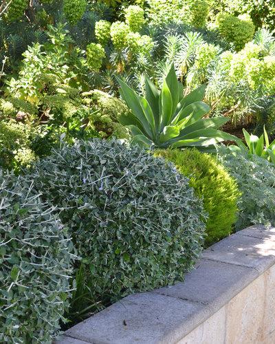 Eclectic  by Annie Deere Garden Design