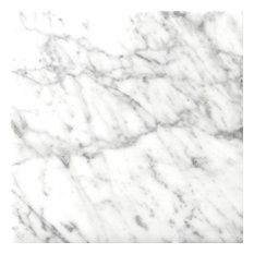 """Marble Bianco Gioia 24""""x24"""" Marble Large Format Floor Tile, Set of 4"""