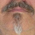 Foto de perfil de Aged Woods, Inc