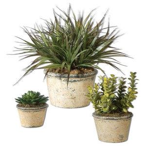 Faux Floral Greenery Succulent Plants, 3-Piece Set