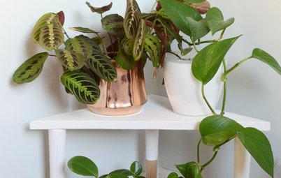 Easy DIY: Triangular Plant Stand