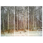 """James Bourret - First Snow Triptych Print, Set of 3, 40""""x55"""" - Hi resolution Photographic triptych print on canvas by acclaimed photographer/artist James Bourret. This highly detailed photograph was made using a large format view camera and is full of depth and three-dimensionality. The prints are mounted (stretched) on 3 separate frames. Ready to hang. While no artwork should be hung in direct sunlight, the prints are very lightfast and durable."""