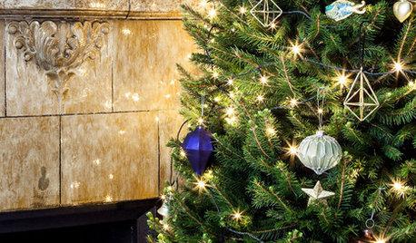 Fråga experten: Här är julens största gröna trender