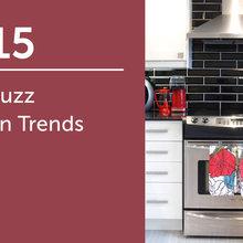 2015 CA Houzz Kitchen Trends Study
