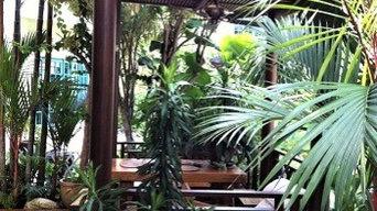 Outdoor Decking & Trellis