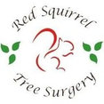 Red Squirrel Tree Surgery's profile photo