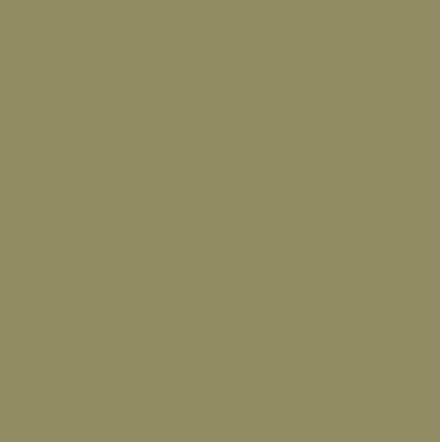 Khaki green paint fair ici 830 khaki green match paint for Khaki green walls