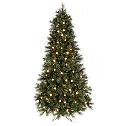 Christmas Trees by Regency International